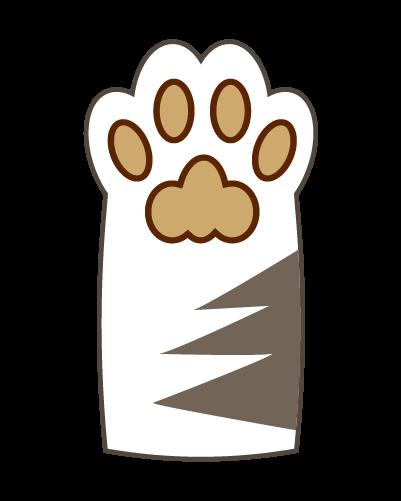 白猫の肉球のイラスト