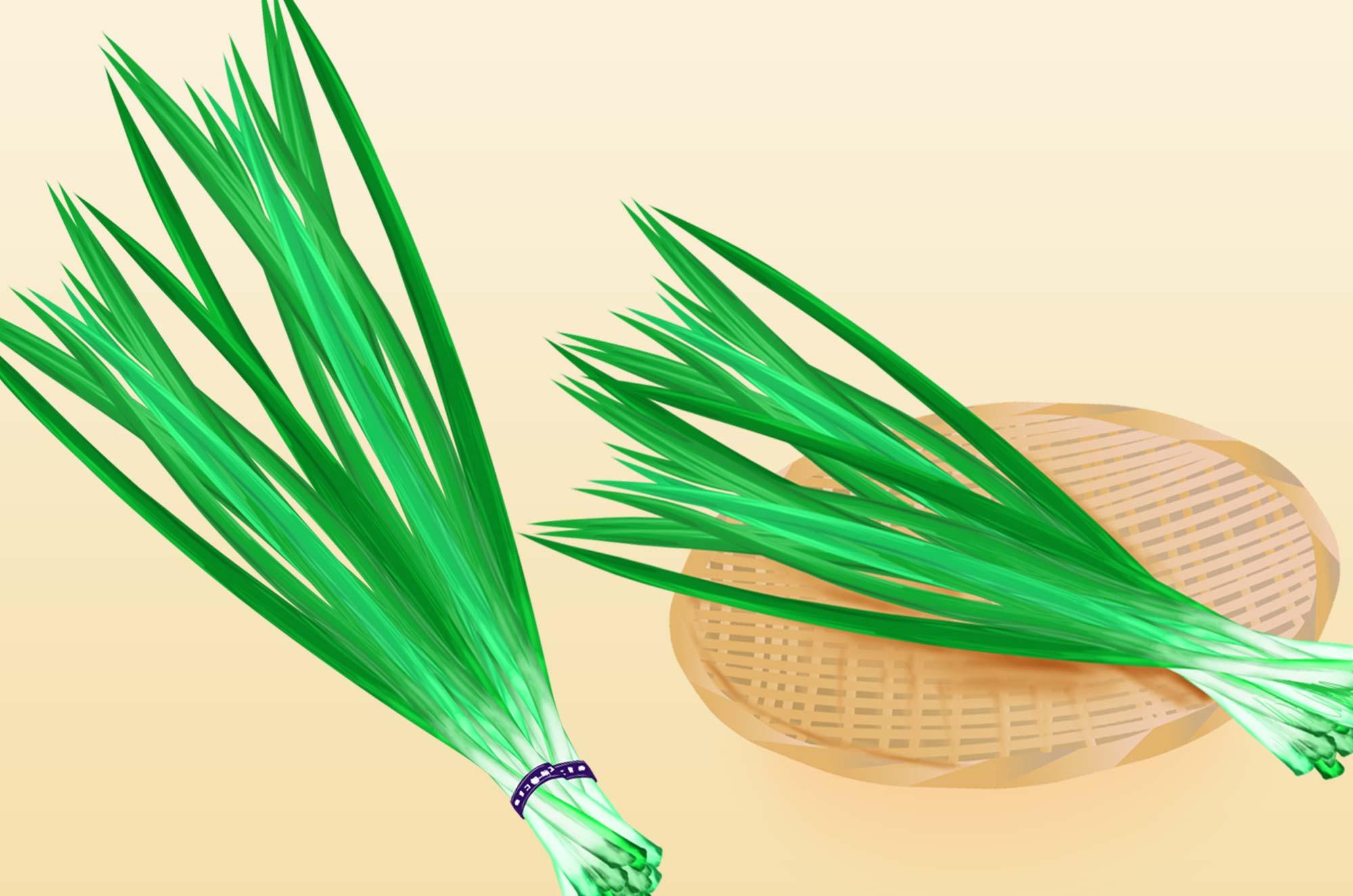 にらのイラスト - リアル・水彩タッチの野菜無料素材
