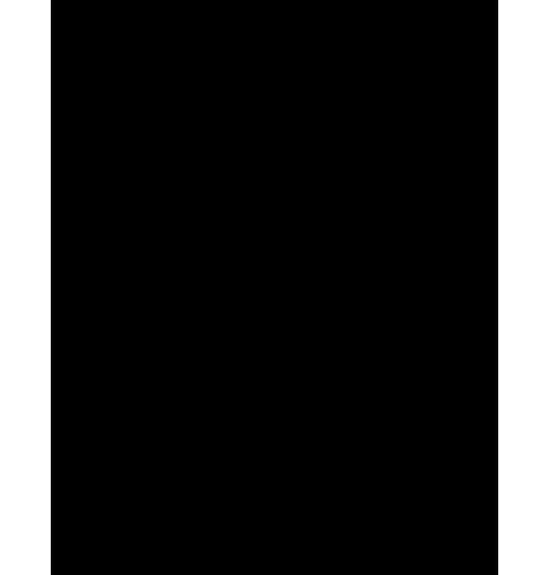 沖縄の大陸シルエットのイラスト