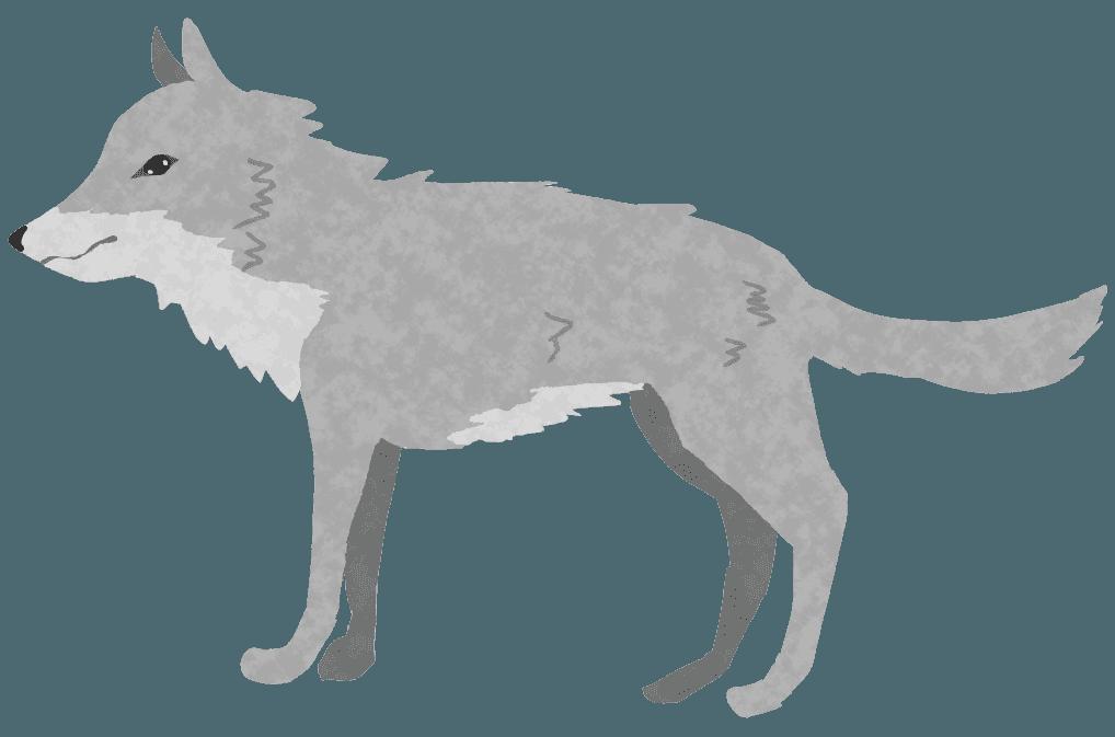 狼のイラスト