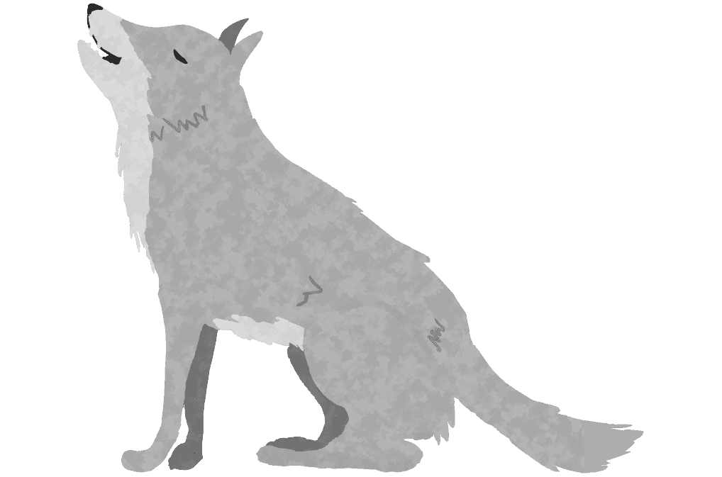 遠吠えをする狼のイラスト