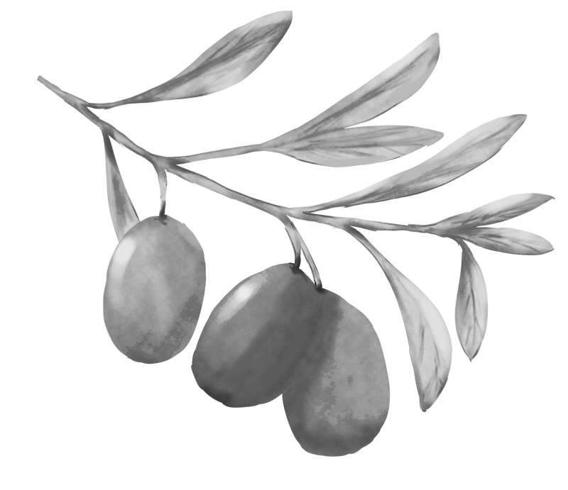 オリーブの白黒イラスト