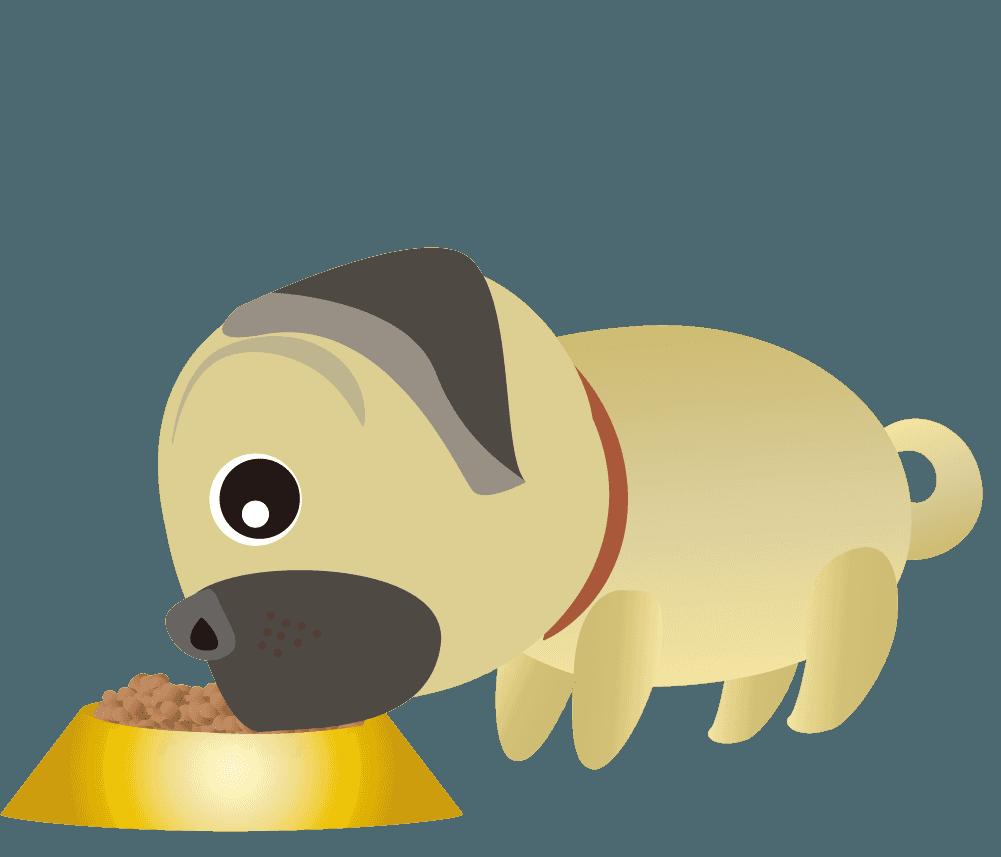 ドックフードを食べるパグのイラスト