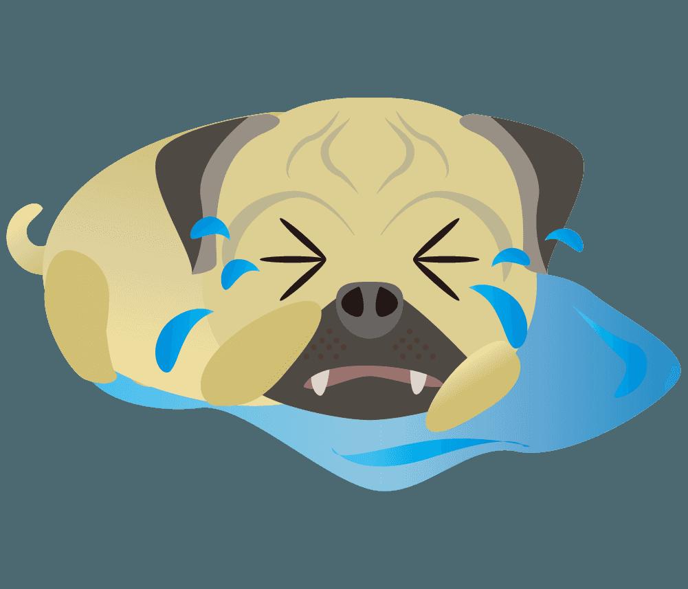 かなり泣いているパグのイラスト