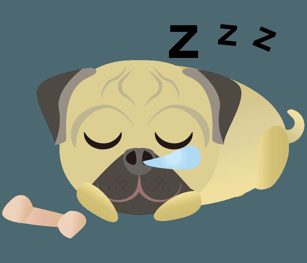 熟睡しているパグのイラスト