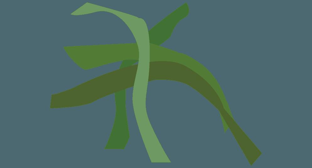 刻んだシソの葉のイラスト