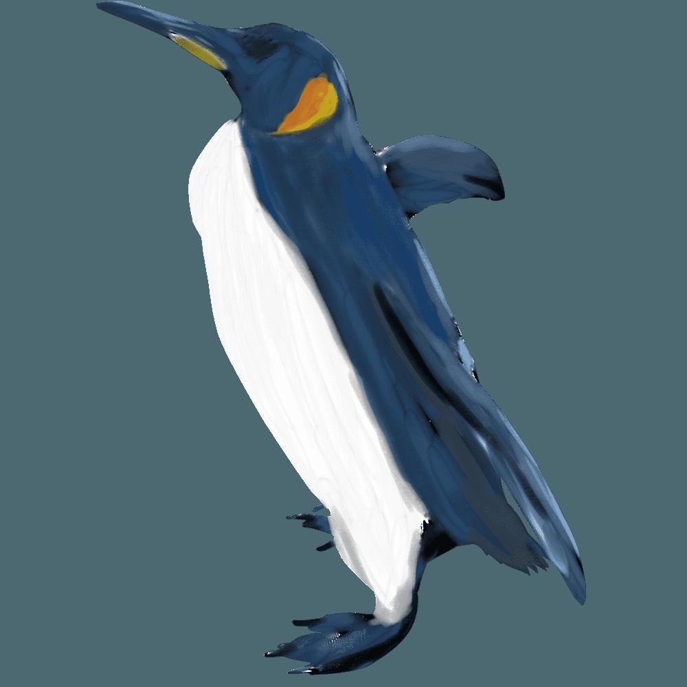 ペンギンイラスト - 可愛いさ満点!最もクールな動物素材 - チコデザ