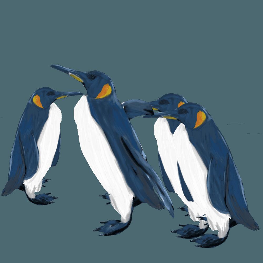 水彩画の皇帝ペンギンの群れイラスト