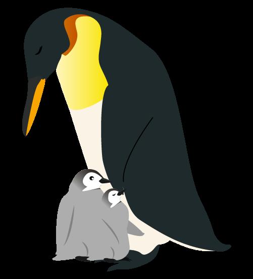 眠るペンギンの親子のイラスト