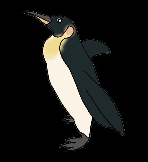 手書きのペンギンのイラスト