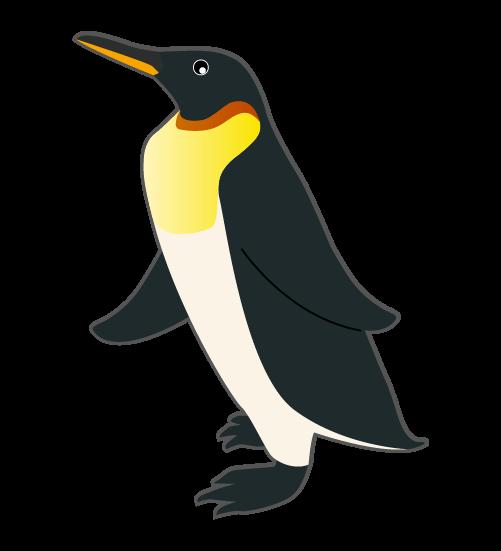 リアルなペンギン(線あり)のイラスト