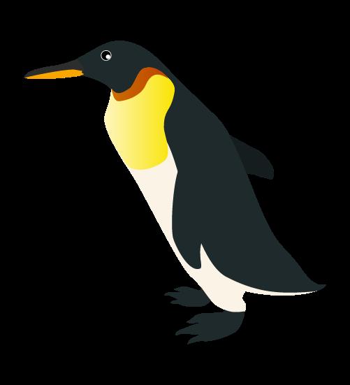 リアルなペンギン2のイラスト