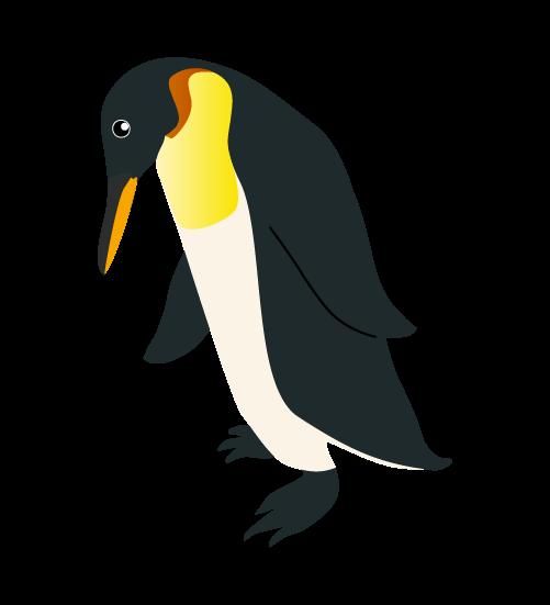 下を向くペンギンのイラスト
