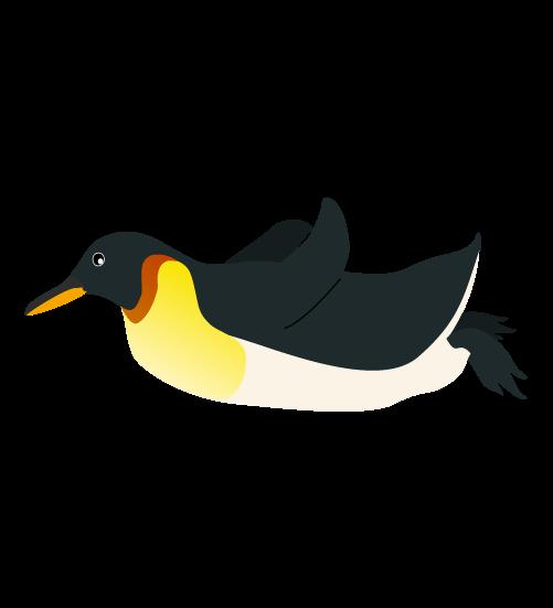 滑るペンギンのイラスト