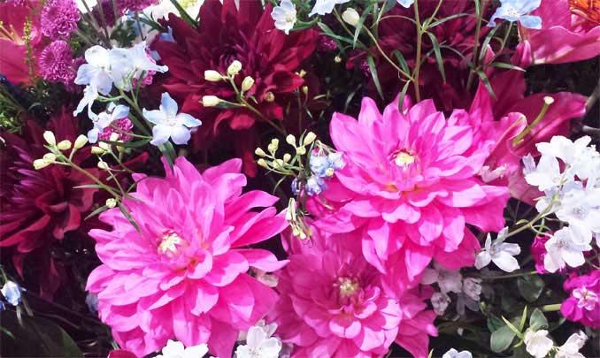 加工前の花の写真