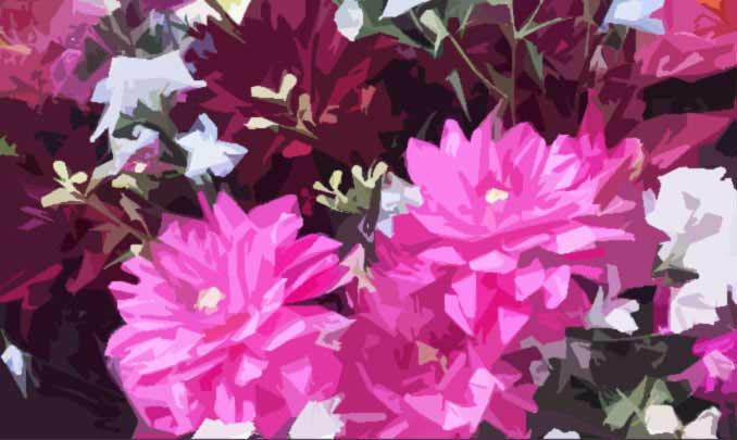 フィルター → フィルターギャラリー → 切り絵風の花の写真