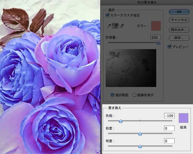 色が変化した薔薇の花びら