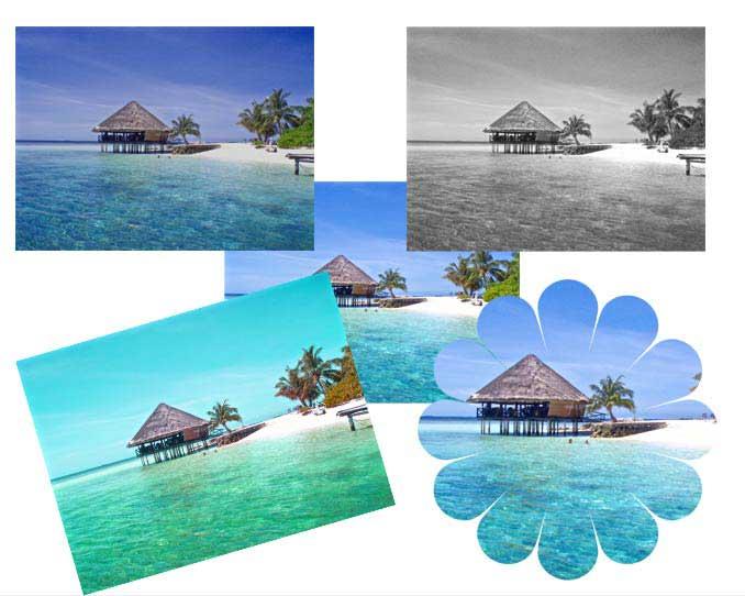 切り抜かれた写真と様々な色調に変更された写真のサンプル