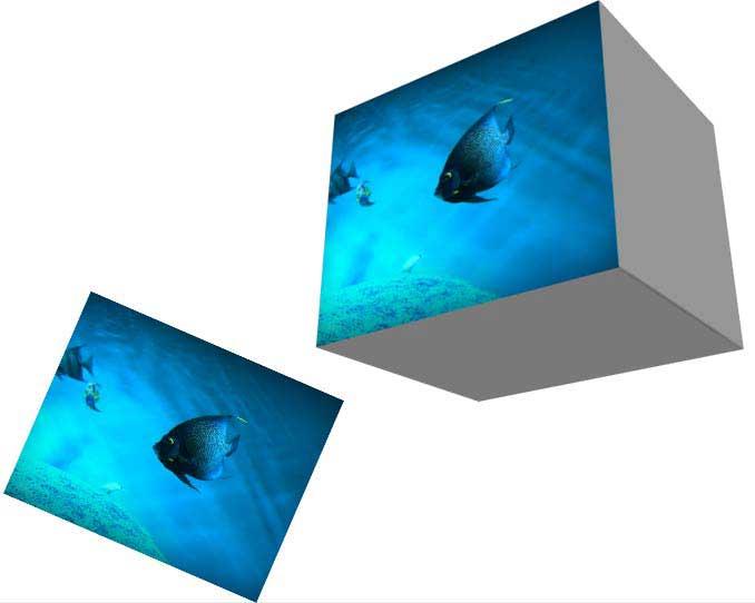 魚の写真とphotoshopで正方形に3D化したレイヤー