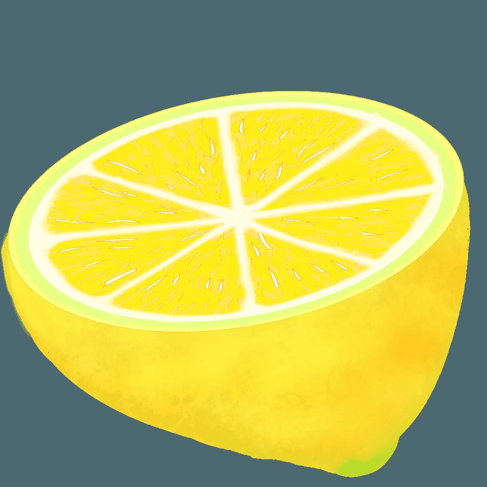 半分に切ったレモンイラスト