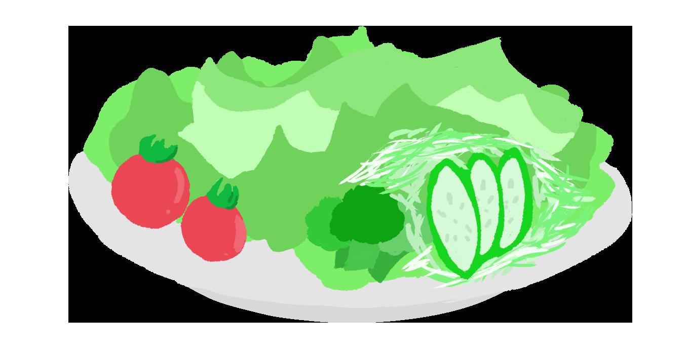 レタスのサラダのイラスト