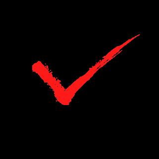 チェックボックス(赤)のイラスト6