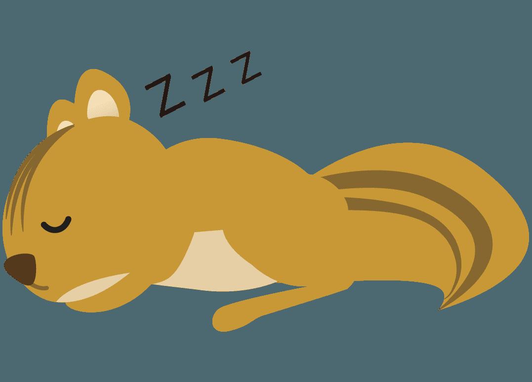 寝ているりすイラスト