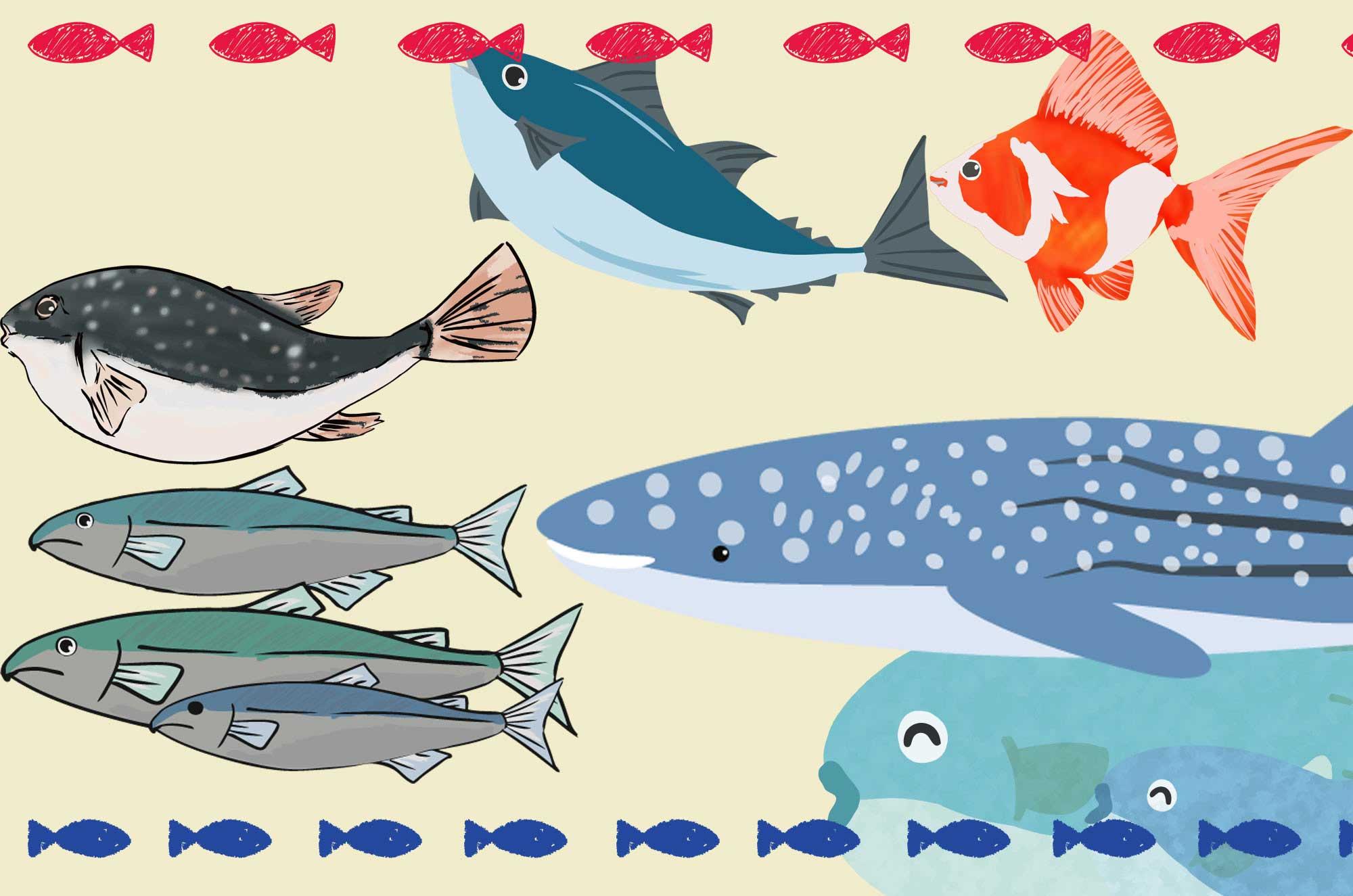 魚のイラスト特集 - 海・淡水の無料で使える可愛い素材