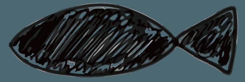 鉛筆で描いた魚のイラスト