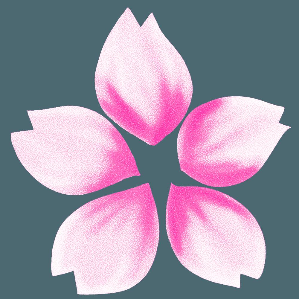 アートな桜の花のイラスト