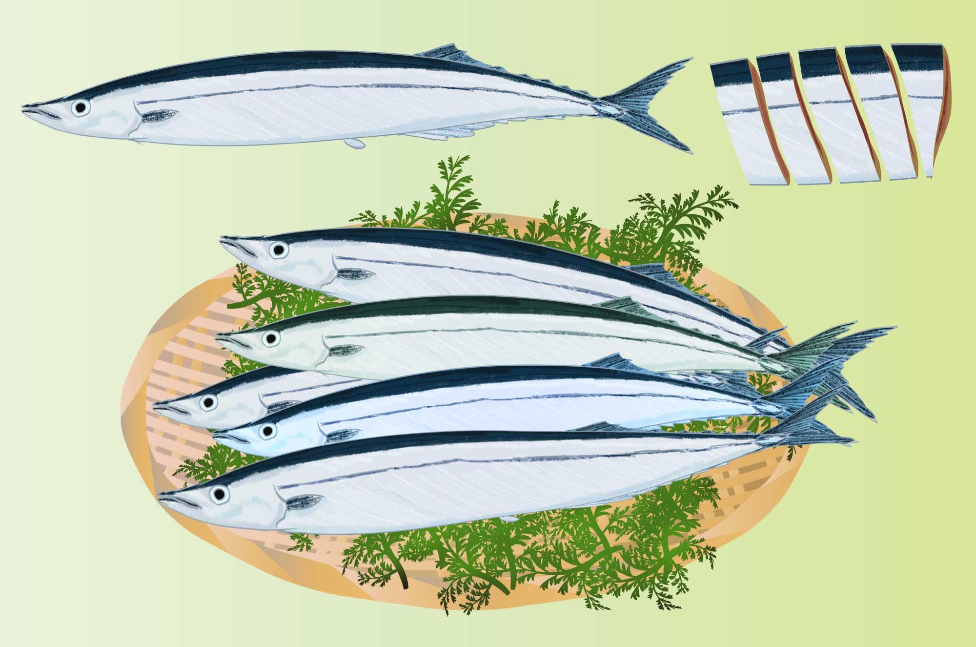 サンマ(秋刀魚)の無料イラスト - 美味しそうな魚素材