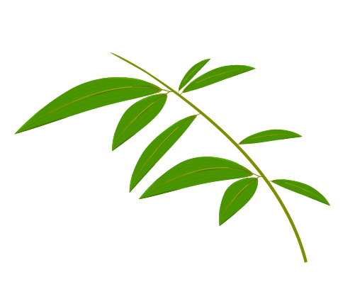 笹の葉のイラスト11
