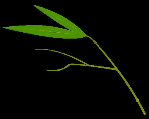 笹の葉のイラスト12