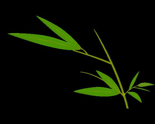 笹の葉のイラスト13