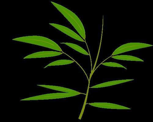 笹の葉のイラスト16