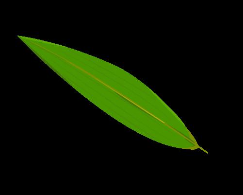 笹の葉のイラスト19