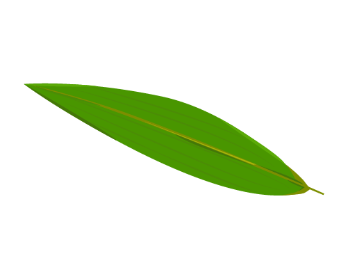 笹の葉のイラスト2