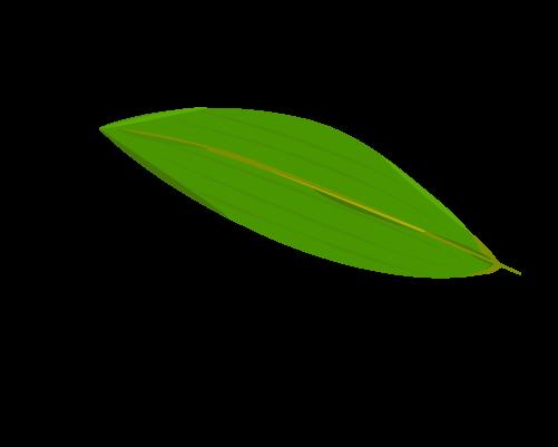 笹の葉のイラスト20