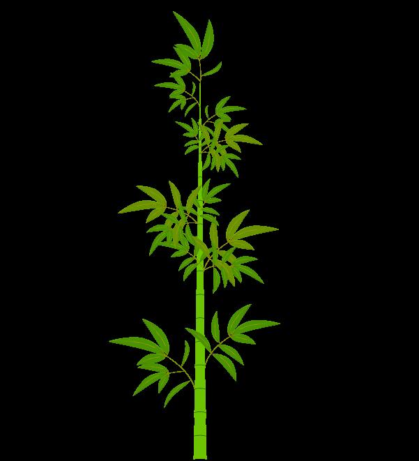 笹の葉と枝のイラスト2