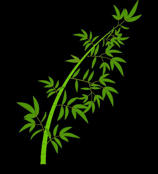 笹の葉と枝のイラスト5