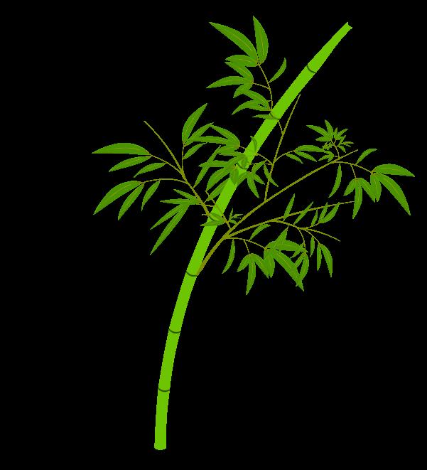 笹の葉と枝のイラスト6