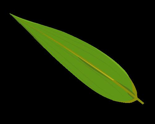 笹の葉のイラスト3