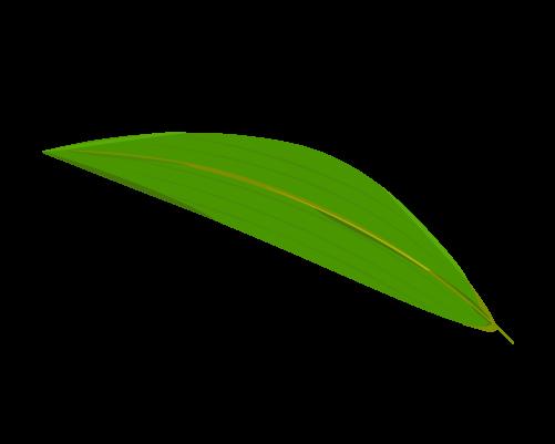 笹の葉のイラスト4