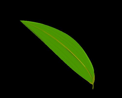 笹の葉のイラスト6