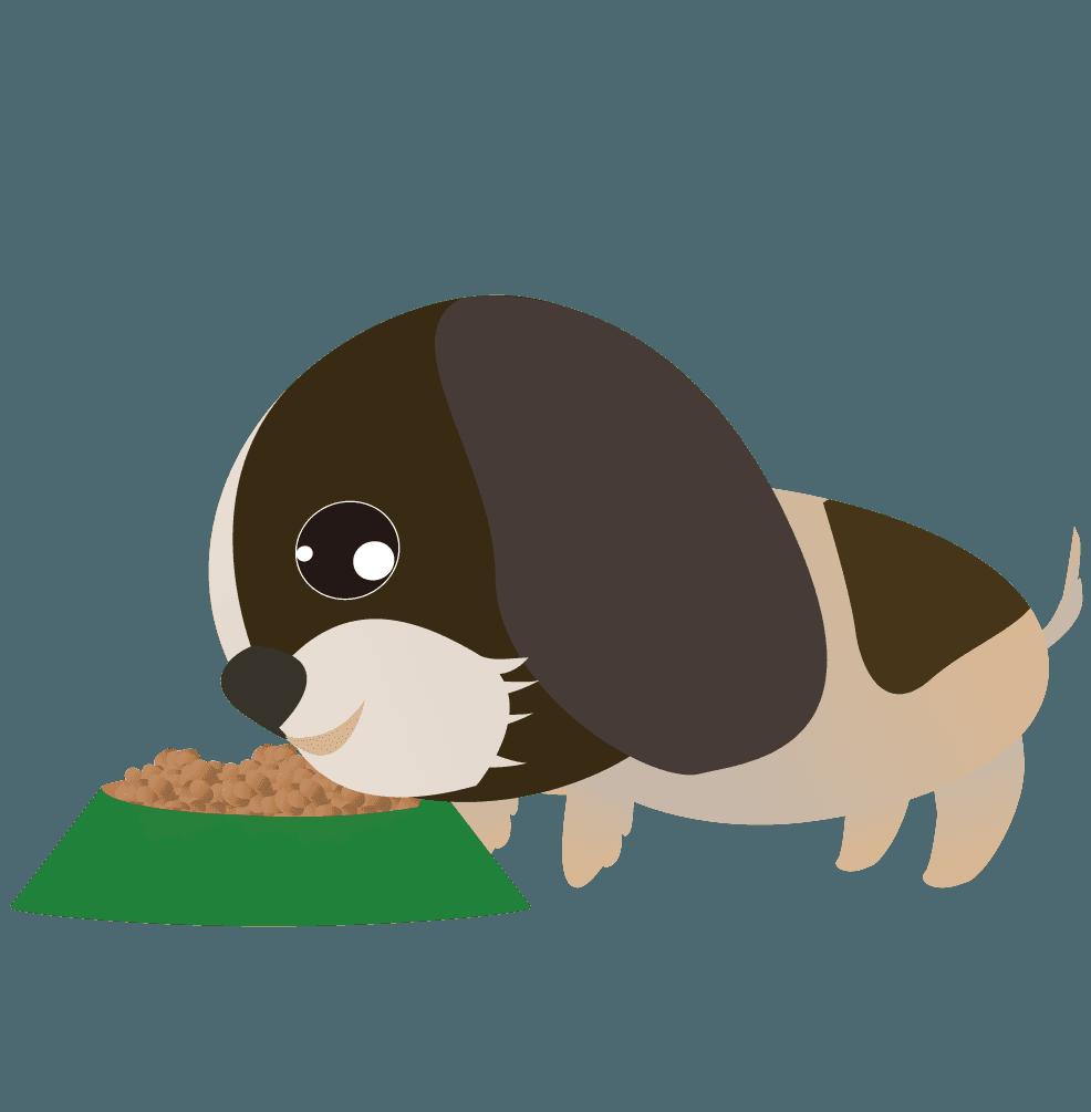 餌を食べるシーズーのイラスト