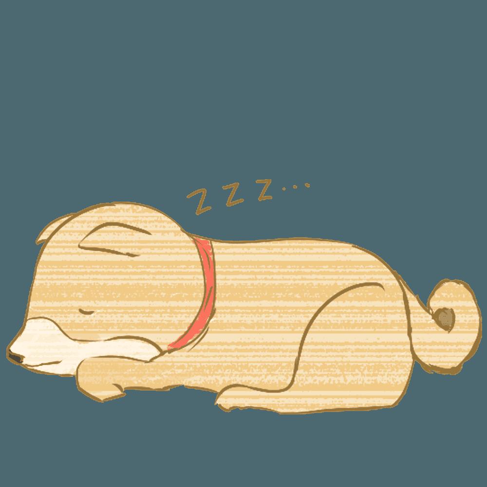 寝る柴犬イラスト