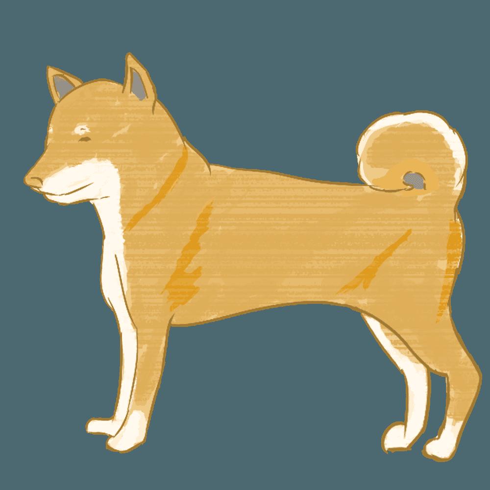 ちょっとリアル目な柴犬イラスト