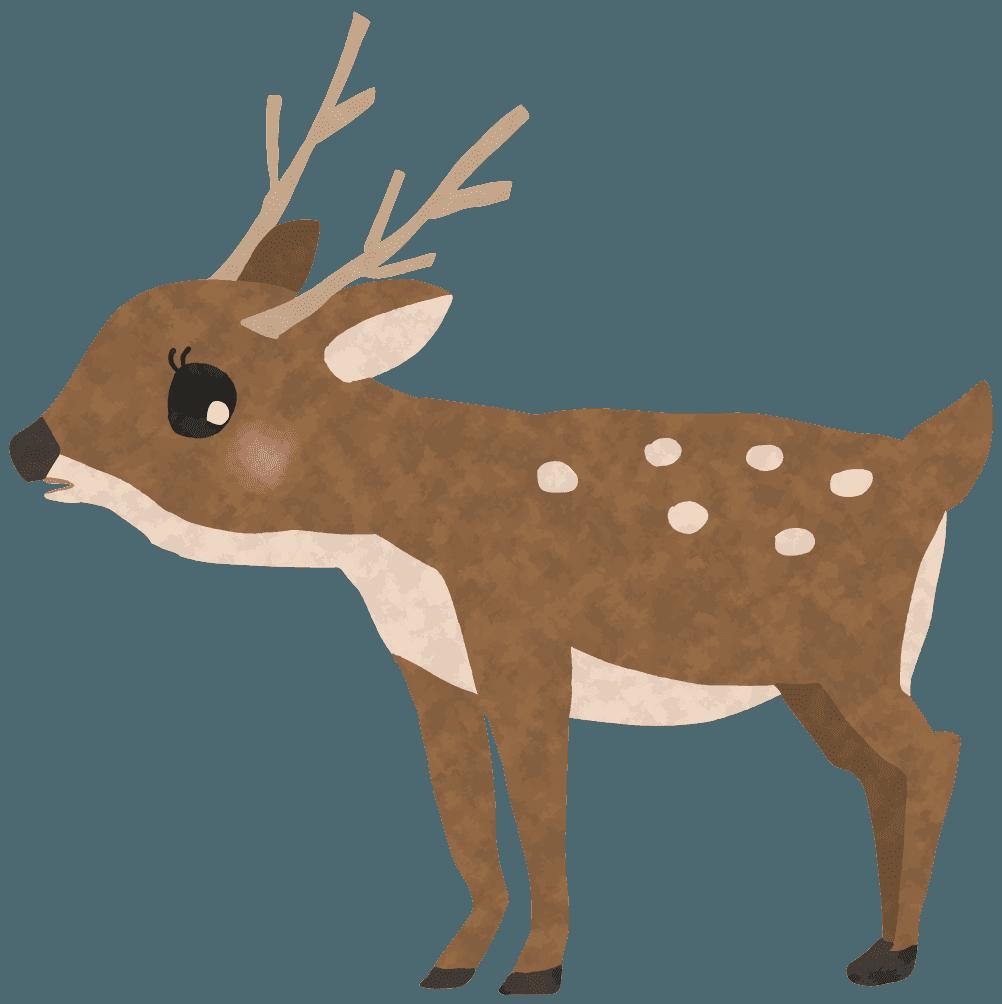 首を上げるメスの鹿イラスト