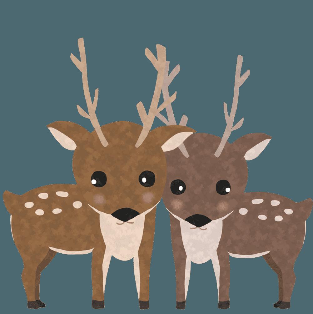 こちらを様子を見る2匹の鹿イラスト