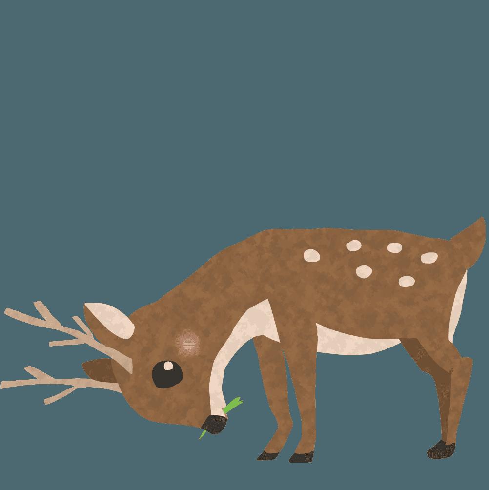 餌を食べる鹿イラスト